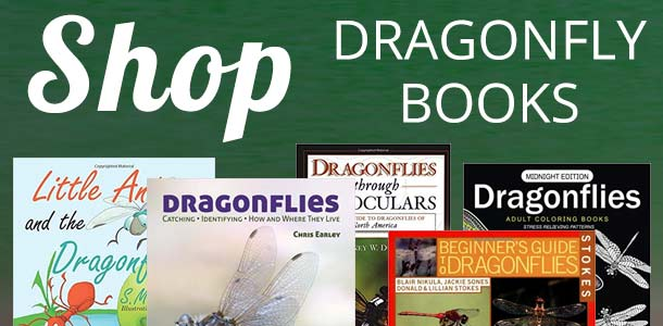 Dragonfly Book Store