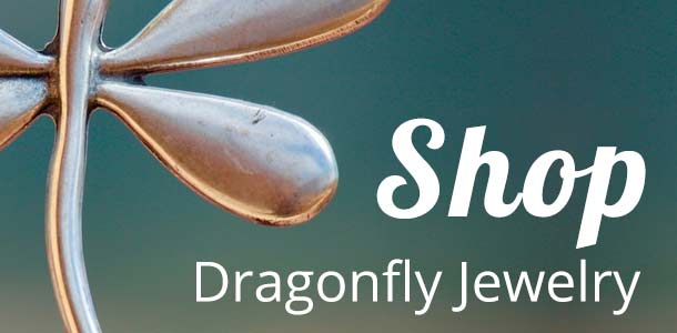Dragonfly Jewelry Store